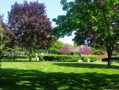 Johnson Park